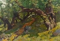 lichter waldweg mit kastanienbäumen by plinio colombi
