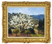 a white blossom tree in provence by marie-lucie nessi-valtat