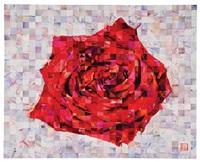 red rose by kenji ichikawa