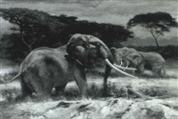 elephants by hodges d. soileau