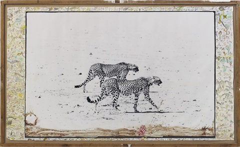 hunting cheetahs on the taru desert kenya june by peter beard