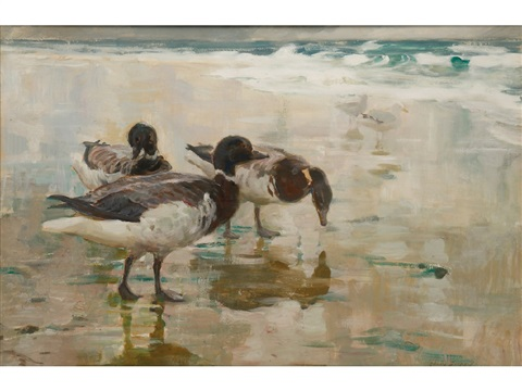 ducks and gulls by charles walter simpson
