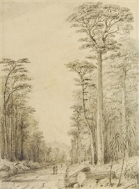 road through the birch forest upper hutt (in oct 1847) by william swainson