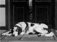 sweet dreams - portrait of a setter by charles lennox-wright