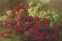 red and white roses by josef pilters
