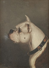 bulldog head (study)(pair) by edwin (of bath) loder
