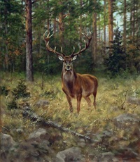 stag in the woods by alexander pope