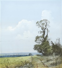 wicken fen (+ and field and hedgerow at gayton near towcester; pair) by peter newcombe