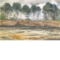 logging scene by andrew winter