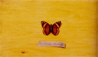 a brown butterfly by jefferson david chalfant