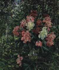 les pivoines by lioudmila zabelina