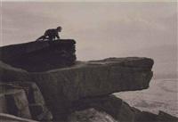 buckstones, scammonden moor, yorkshire by george tice