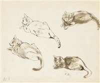 studies of cats by peggy bacon