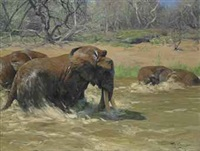 elephants in a river by wilhelm friedrich kuhnert