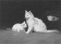 katzenfamilie by beno boleradszky