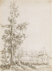 a landscape and a fortified house, a tree in the foreground by wolf huber
