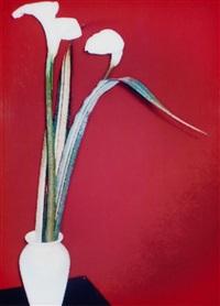 les fleurs by holger jacobs