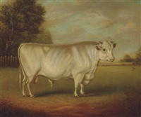 earl spencer's famous shorthorn bull by william henry davis
