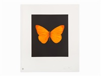butterfly etching (hope) by damien hirst