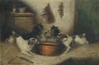 terriers at feeding time by edward armfield