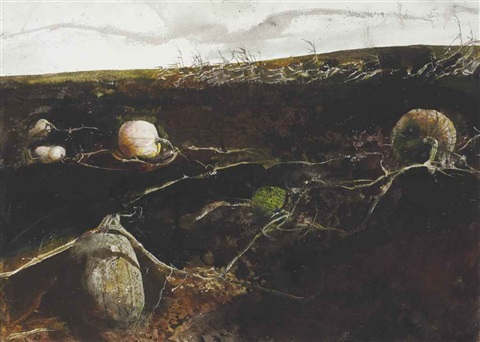 pumpkin hill by andrew wyeth