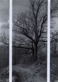 tree study triptych by william j. mullins