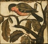 due volatili, frosone e ciuffolotto by pier sante cicala
