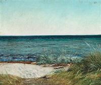 sommerdag ved greve strand. solskin. blaa himmel og blaat vand by laurits andersen ring