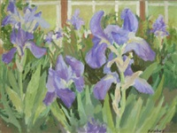 june irises by brien vahey