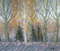 les bouleaux en hiver by youri lobatchev