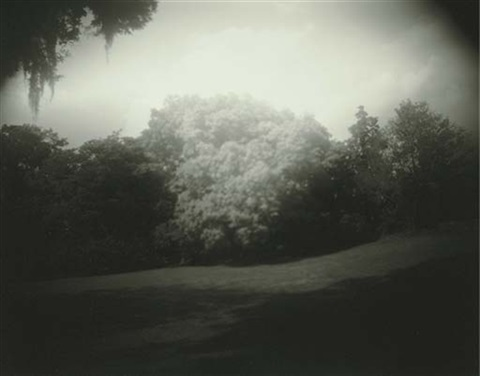 untitled virginia by sally mann
