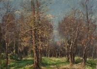 bosco in autunno by alberto cecconi