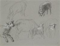 étude de moutons - étude de deux vaches - un berger (3 works) by constant troyon