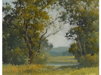 marin county view by percy gray