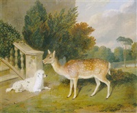 a favourite doe with a poodle in a park by edward webb