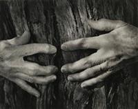 woman's hands by wynn bullock