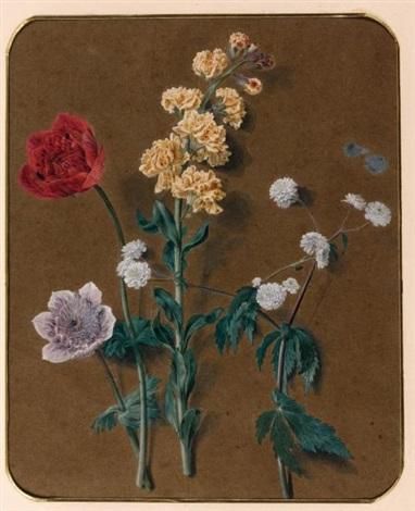 etude de fleurs giroflées et anémones study by alexis nicolas perignon the elder