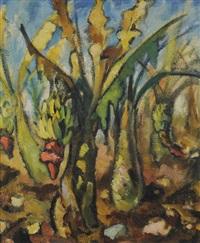 les bananiers by paul konrad hoenich