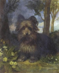 roy the terrier in a wood by eden upton eddis