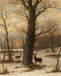 rehwild in winterlicher landschaft by caesar bimmermann