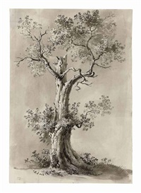 blasted tree (study) by jean-jacques de boissieu
