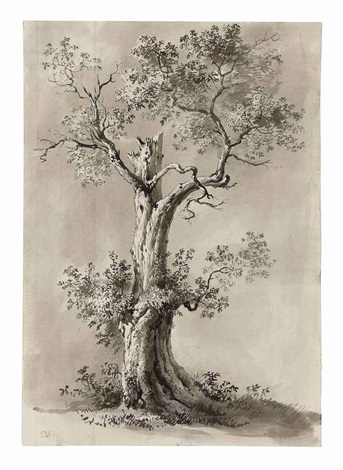 blasted tree study by jean jacques de boissieu
