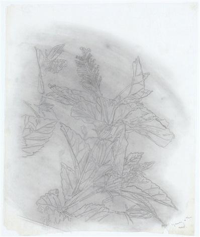 plant by hiro yamagata