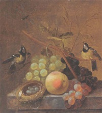 a still life of grapes, a peach and a dragonfly, together with blue tits and a bird's nest, arranged upon a marble ledge by johannes hendrik fredriks
