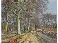 an avenue, rossie priory by james mcintosh patrick