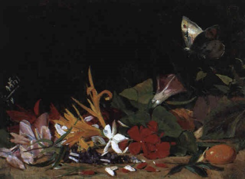 blumen mit schmetterling by salvador abril y blasco