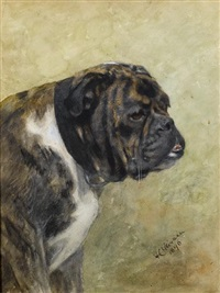 a portrait of a brindle bulldog by frances c. fairman