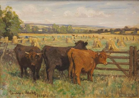 highland cattle at harvest time by joseph denovan adam