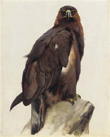 golden eagle by charles whymper