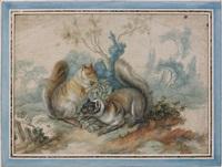 deux écureuils d'amérique by alexis peyrotte